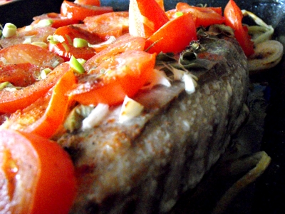baked blue warehou fillet with spring onion and tomatoes