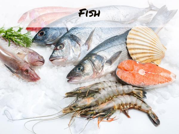 fish display