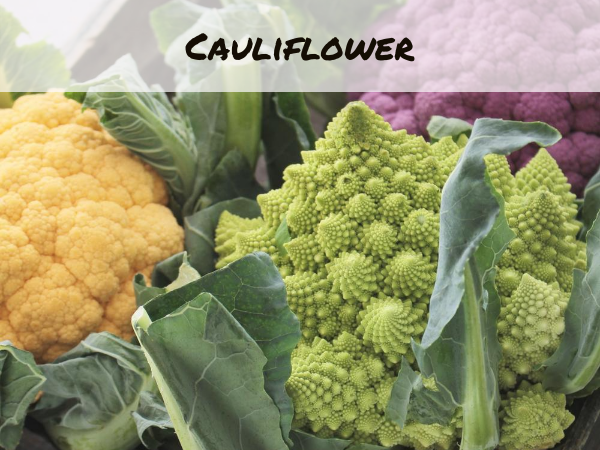 Colored cauliflower