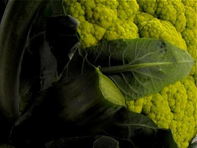 Green broccoflower
