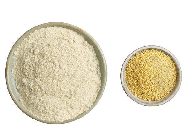 millet grain and flour