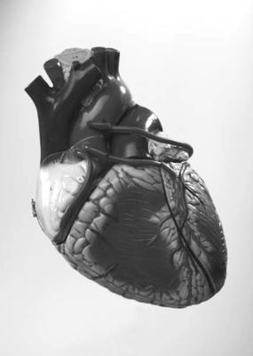 Salt less diet  with heart valve deficiency